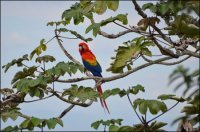 Places to Photograph - Costa Rica