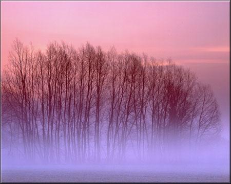 Better Landscape Photography 04