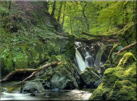Better Landscape Photography 11