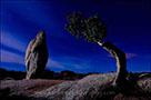Light Painting Photography Masterclass