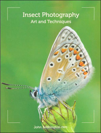 Photography Review  - Insect Photography