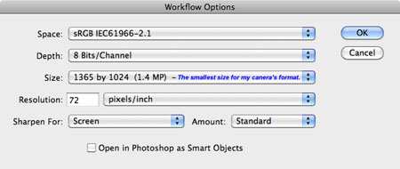 Photography Workflow - Workflow Options