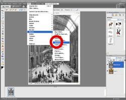 Artistic Images PE Screen 10