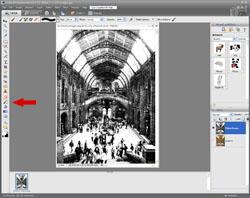 Artistic Images PE Screen 12