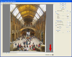 Artistic Images PE Screen 2