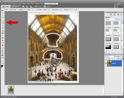 Artistic Images PE Screen 4