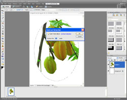Image Extraction PE Screen 13