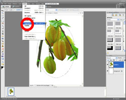 Image Extraction PE Screen 14