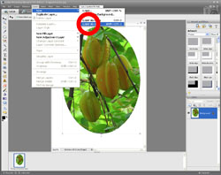 Image Extraction PE Screen 5