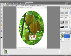 Image Extraction PE Screen 9
