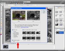 Monochrome Conversion PE Screen 3