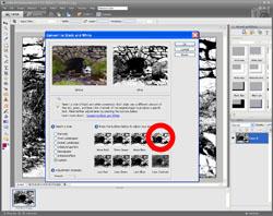 Monochrome Conversion PE Screen 4