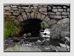 Photo Editing Monochrome Conversion