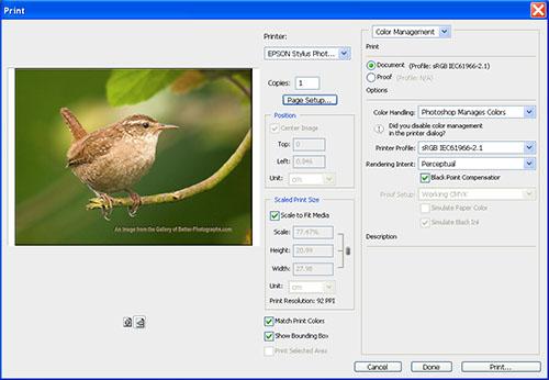 Photography Tips Monitor Calibration