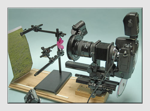 Macro Photography Equipment